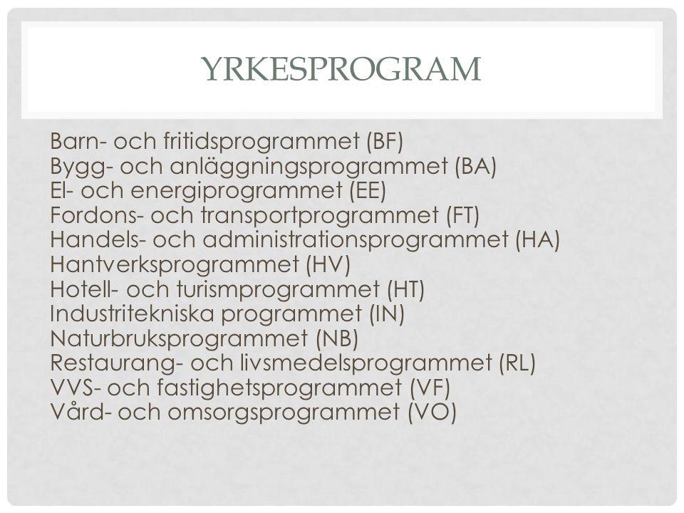 YRKESPROGRAM Barn- och fritidsprogrammet (BF) Bygg- och anläggningsprogrammet (BA) El- och energiprogrammet (EE) Fordons- och transportprogrammet (FT) Handels- och administrationsprogrammet (HA) Hantverksprogrammet (HV) Hotell- och turismprogrammet (HT) Industritekniska programmet (IN) Naturbruksprogrammet (NB) Restaurang- och livsmedelsprogrammet (RL) VVS- och fastighetsprogrammet (VF) Vård- och omsorgsprogrammet (VO)