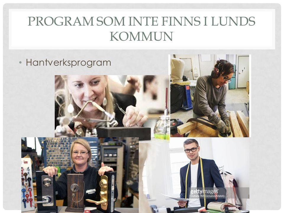 PROGRAM SOM INTE FINNS I LUNDS KOMMUN Hantverksprogram