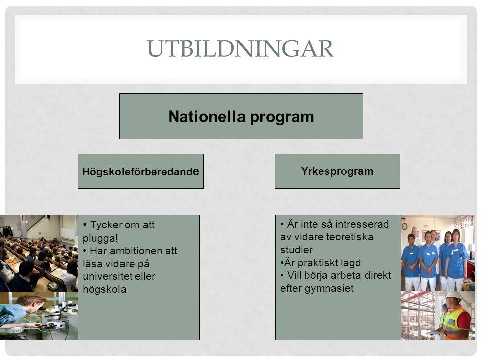UTBILDNINGAR Nationella program Högskoleförberedand e Yrkesprogram Tycker om att plugga.
