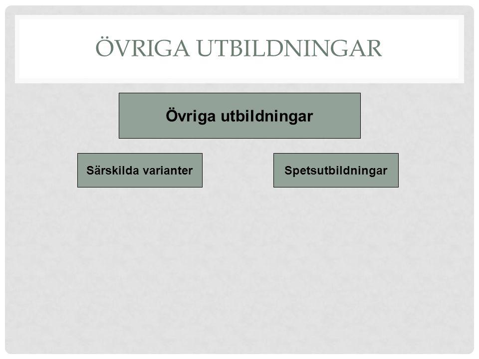 ÖVRIGA UTBILDNINGAR Övriga utbildningar Särskilda varianterSpetsutbildningar