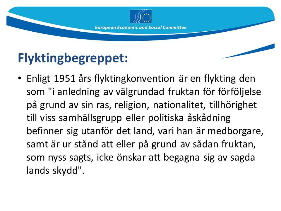 Enligt 1951 års flyktingkonvention är en flykting den som i anledning av välgrundad fruktan för förföljelse på grund av sin ras, religion, nationalitet, tillhörighet till viss samhällsgrupp eller politiska åskådning befinner sig utanför det land, vari han är medborgare, samt är ur stånd att eller på grund av sådan fruktan, som nyss sagts, icke önskar att begagna sig av sagda lands skydd .