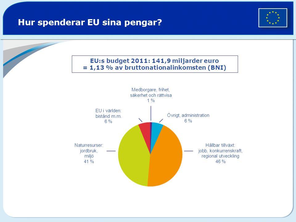 Hur spenderar EU sina pengar.