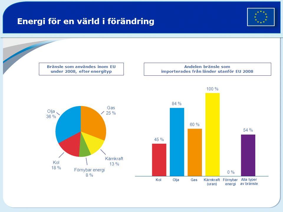 Bränsle som användes inom EU under 2008, efter energityp Andelen bränsle som importerades från länder utanför EU 2008 Olja 36 % Gas 25 % Kärnkraft 13 % Kol 18 % Förnybar energi 8 % 45 % 84 % 60 % 100 % 54 % OljaKolGasKärnkraft (uran) Förnybar energi Alla typer av bränsle 0 % Energi för en värld i förändring