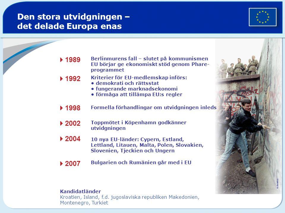 Den stora utvidgningen – det delade Europa enas Berlinmurens fall – slutet på kommunismen EU börjar ge ekonomiskt stöd genom Phare- programmet Kriterier för EU-medlemskap införs: demokrati och rättsstat fungerande marknadsekonomi förmåga att tillämpa EU:s regler Formella förhandlingar om utvidgningen inleds Toppmötet i Köpenhamn godkänner utvidgningen 10 nya EU-länder: Cypern, Estland, Lettland, Litauen, Malta, Polen, Slovakien, Slovenien, Tjeckien och Ungern  1989  1992  1998  2002  2004  2007 Bulgarien och Rumänien går med i EU Kandidatländer Kroatien, Island, f.d.