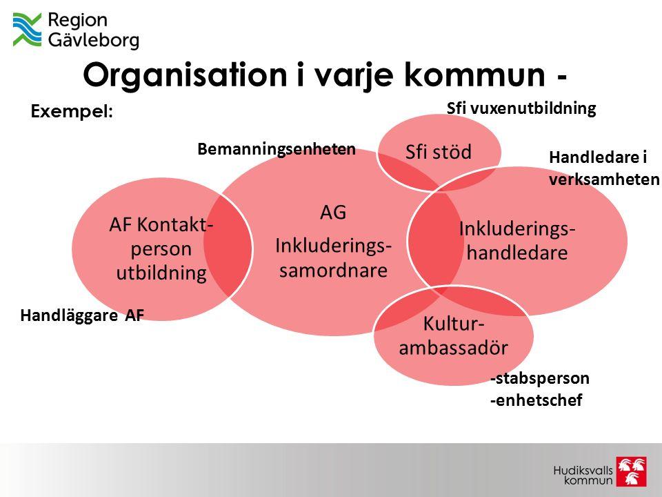 Organisation i varje kommun - AG Inkluderings- samordnare Sfi stöd Inkluderings- handledare Kultur- ambassadör AF Kontakt- person utbildning Handlägga