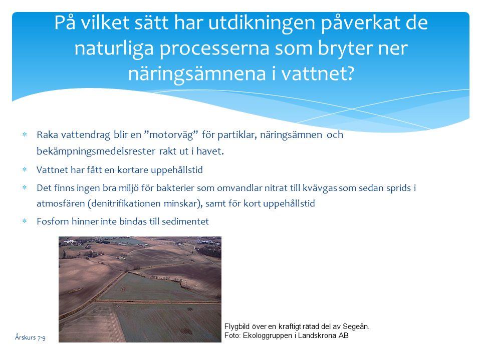  Raka vattendrag blir en motorväg för partiklar, näringsämnen och bekämpningsmedelsrester rakt ut i havet.