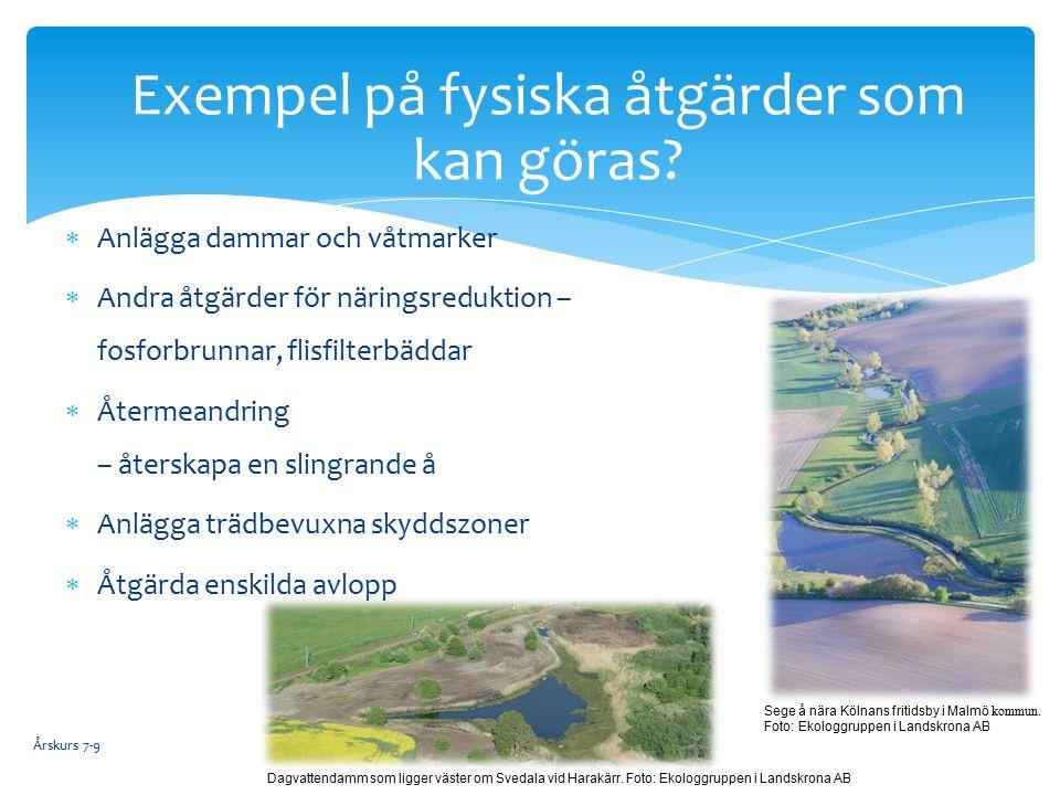  Anlägga dammar och våtmarker  Andra åtgärder för näringsreduktion – fosforbrunnar, flisfilterbäddar  Återmeandring – återskapa en slingrande å  Anlägga trädbevuxna skyddszoner  Åtgärda enskilda avlopp Exempel på fysiska åtgärder som kan göras.