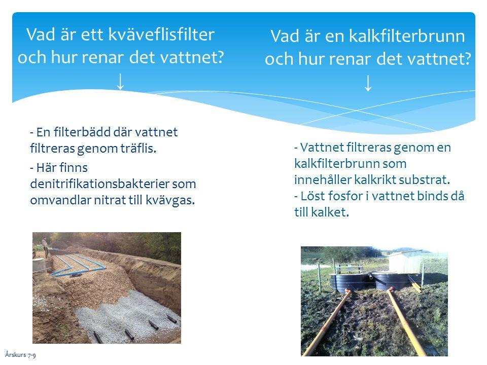 - En filterbädd där vattnet filtreras genom träflis.