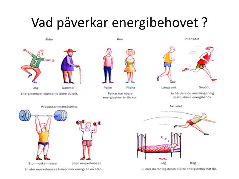 Vad påverkar energibehovet ?