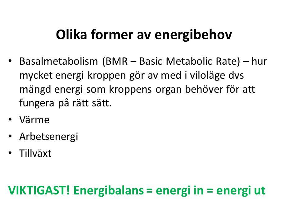 Olika former av energibehov Basalmetabolism (BMR – Basic Metabolic Rate) – hur mycket energi kroppen gör av med i viloläge dvs mängd energi som kroppens organ behöver för att fungera på rätt sätt.