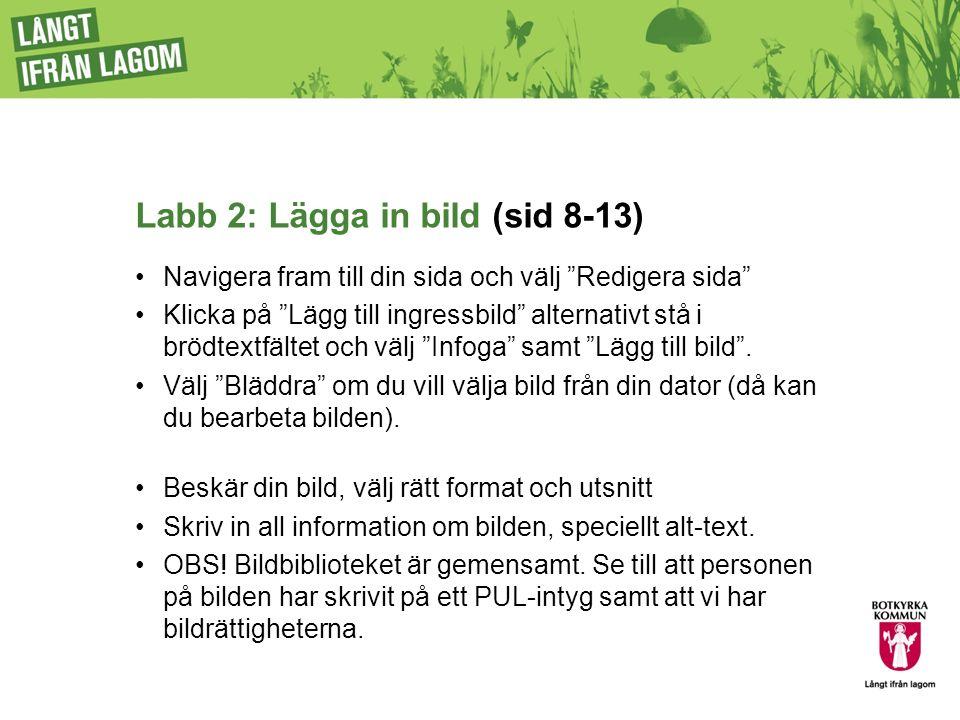 Labb 2: Lägga in bild (sid 8-13) Navigera fram till din sida och välj Redigera sida Klicka på Lägg till ingressbild alternativt stå i brödtextfältet och välj Infoga samt Lägg till bild .