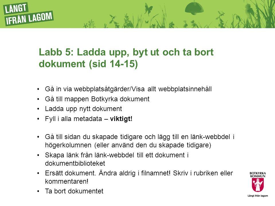 Labb 5: Ladda upp, byt ut och ta bort dokument (sid 14-15) Gå in via webbplatsåtgärder/Visa allt webbplatsinnehåll Gå till mappen Botkyrka dokument Ladda upp nytt dokument Fyll i alla metadata – viktigt.