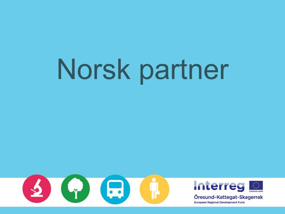 Norsk partner