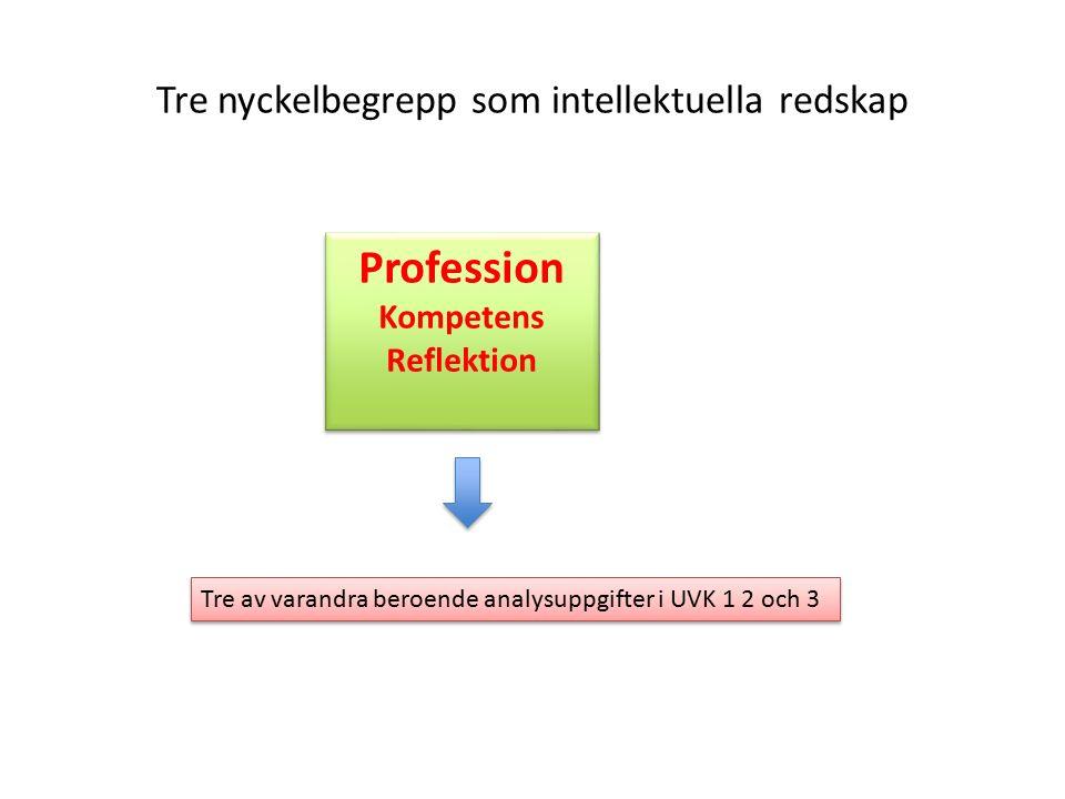 Tre nyckelbegrepp som intellektuella redskap Profession Kompetens Reflektion Tre av varandra beroende analysuppgifter i UVK 1 2 och 3
