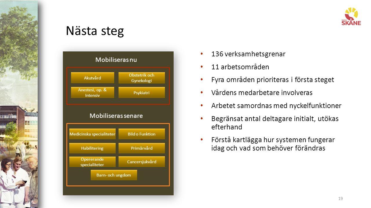 Nästa steg 19 136 verksamhetsgrenar 11 arbetsområden Fyra områden prioriteras i första steget Vårdens medarbetare involveras Arbetet samordnas med nyckelfunktioner Begränsat antal deltagare initialt, utökas efterhand Förstå kartlägga hur systemen fungerar idag och vad som behöver förändras