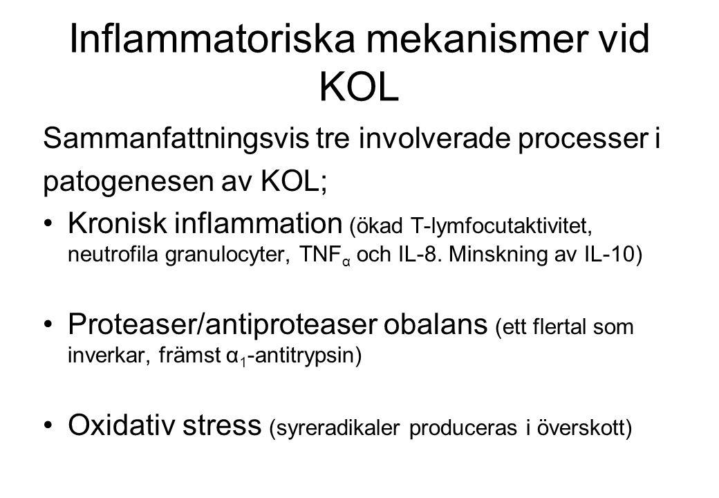 Inflammatoriska mekanismer vid KOL Sammanfattningsvis tre involverade processer i patogenesen av KOL; Kronisk inflammation (ökad T-lymfocutaktivitet, neutrofila granulocyter, TNF α och IL-8.