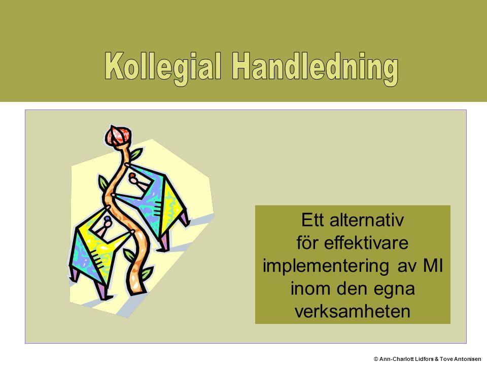 © Ann-Charlott Lidfors & Tove Antonisen Ett alternativ för effektivare implementering av MI inom den egna verksamheten