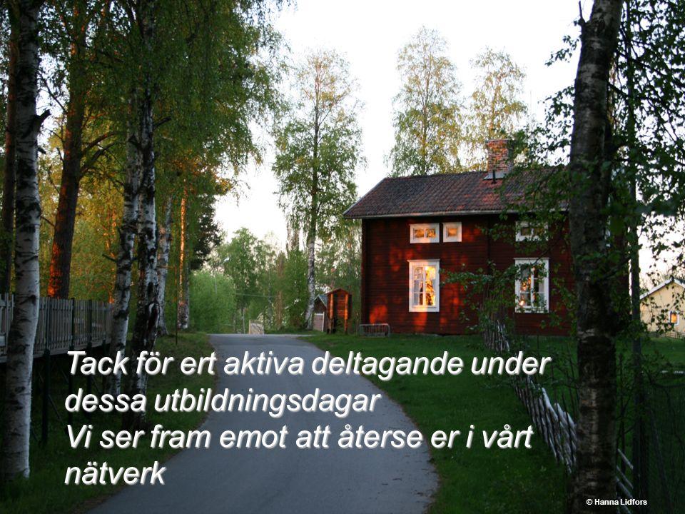 Tack för ert aktiva deltagande under dessa utbildningsdagar Vi ser fram emot att återse er i vårt nätverk © Hanna Lidfors