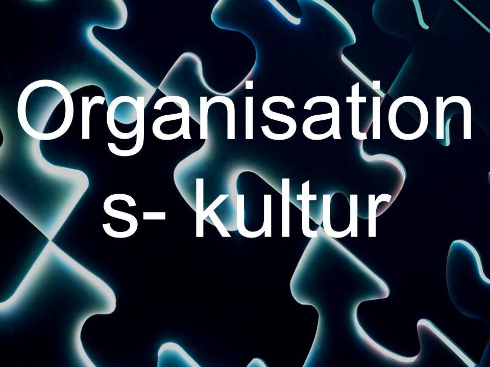 Organisation s- kultur