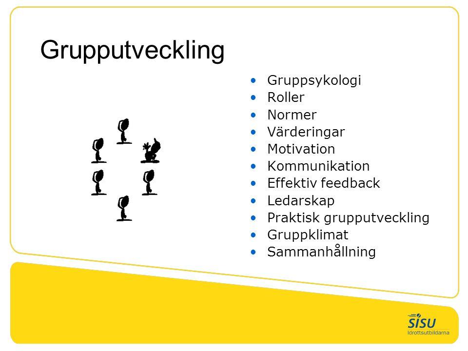 Grupputveckling Gruppsykologi Roller Normer Värderingar Motivation Kommunikation Effektiv feedback Ledarskap Praktisk grupputveckling Gruppklimat Sammanhållning