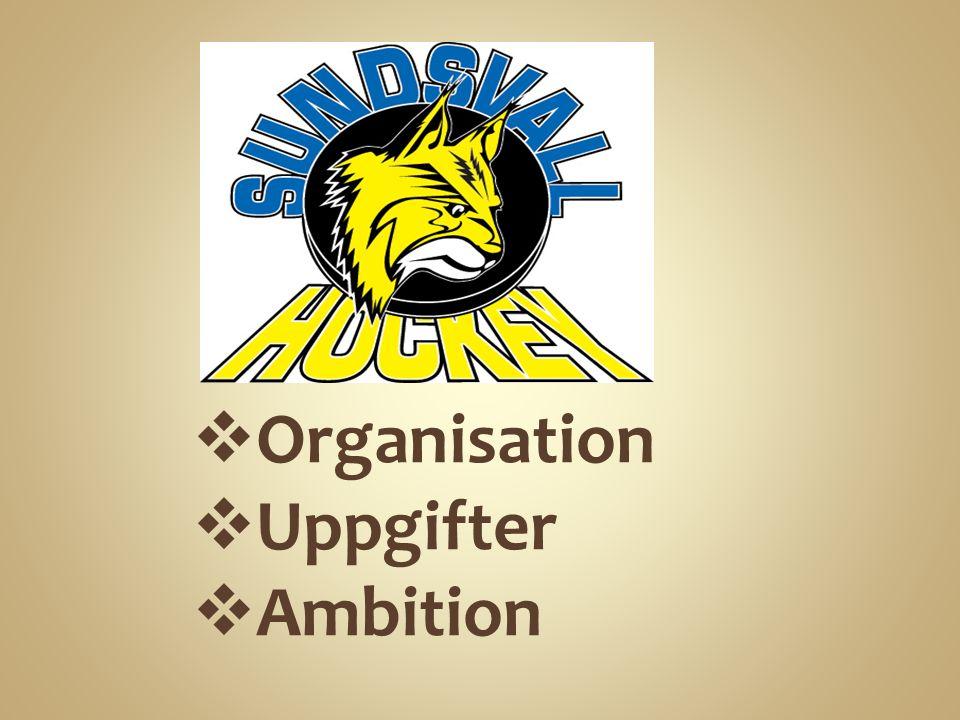  Organisation  Uppgifter  Ambition