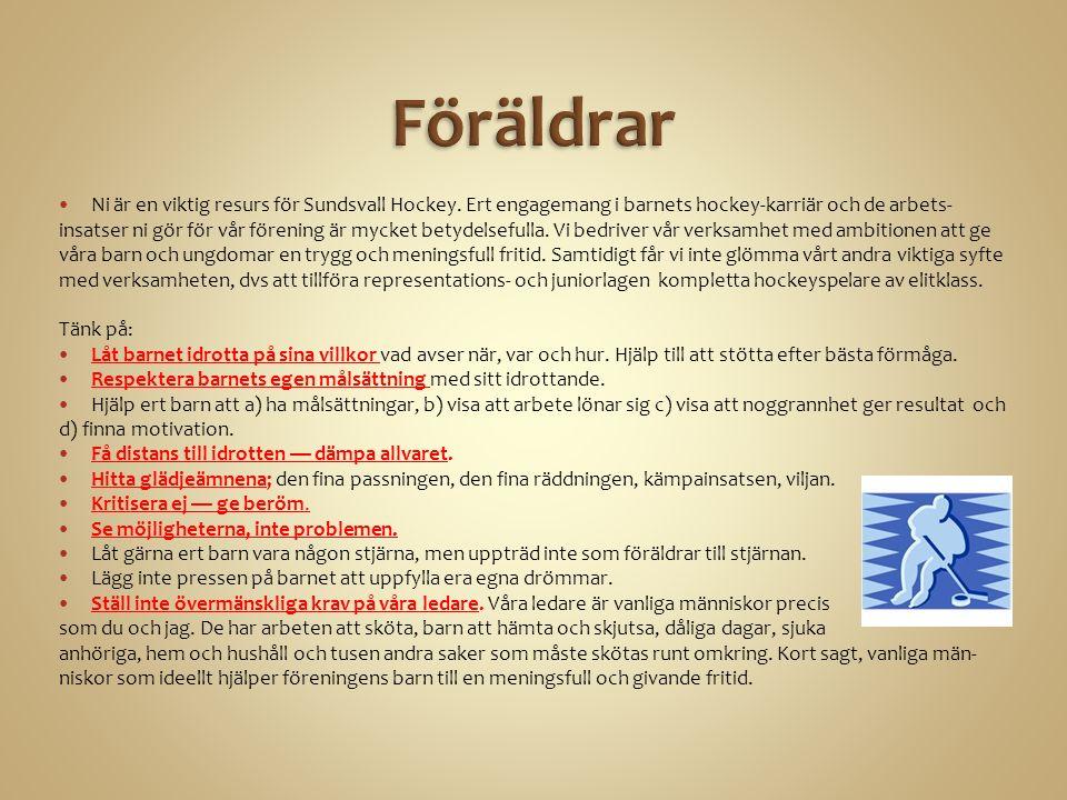Ni är en viktig resurs för Sundsvall Hockey.