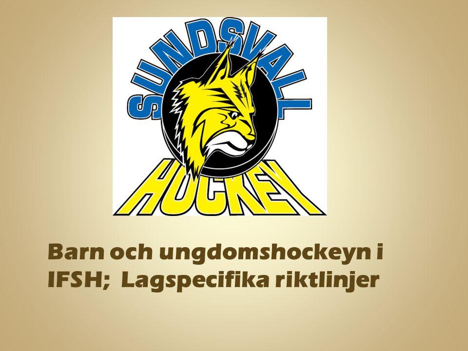 Barn och ungdomshockeyn i IFSH; Lagspecifika riktlinjer