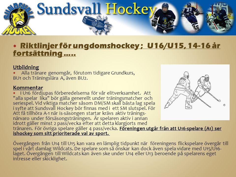 Riktlinjer för ungdomshockey ; U16/U15, 14-16 år fortsättning …..