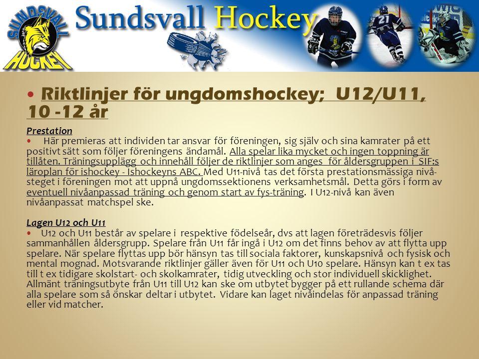 Riktlinjer för ungdomshockey; U12/U11, 10 -12 år Prestation Här premieras att individen tar ansvar för föreningen, sig själv och sina kamrater på ett positivt sätt som följer föreningens ändamål.