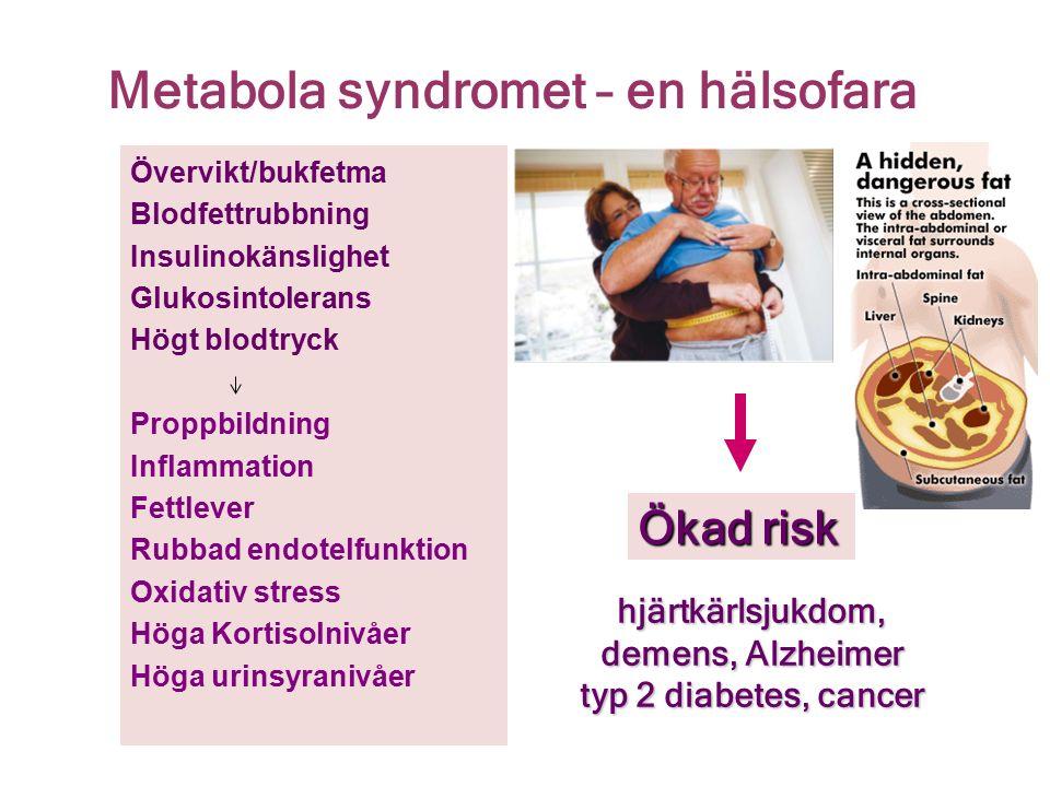 Metabola syndromet – en hälsofara Ökad risk hjärtkärlsjukdom, demens, Alzheimer typ 2 diabetes, cancer Övervikt/bukfetma Blodfettrubbning Insulinokänslighet Glukosintolerans Högt blodtryck Proppbildning Inflammation Fettlever Rubbad endotelfunktion Oxidativ stress Höga Kortisolnivåer Höga urinsyranivåer