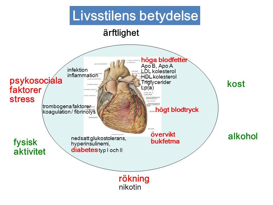 rökning nikotin nedsatt glukostolerans, hyperinsulinemi, diabetes typ I och II psykosociala faktorer stress höga blodfetter Apo B, Apo A LDL kolesterol HDL kolesterol Triglycerider Lp(a) kost alkohol högt blodtryck övervikt bukfetma trombogena faktorer koagulation / fibrinolys fysisk aktivitet ärftlighet infektion inflammation Livsstilens betydelse