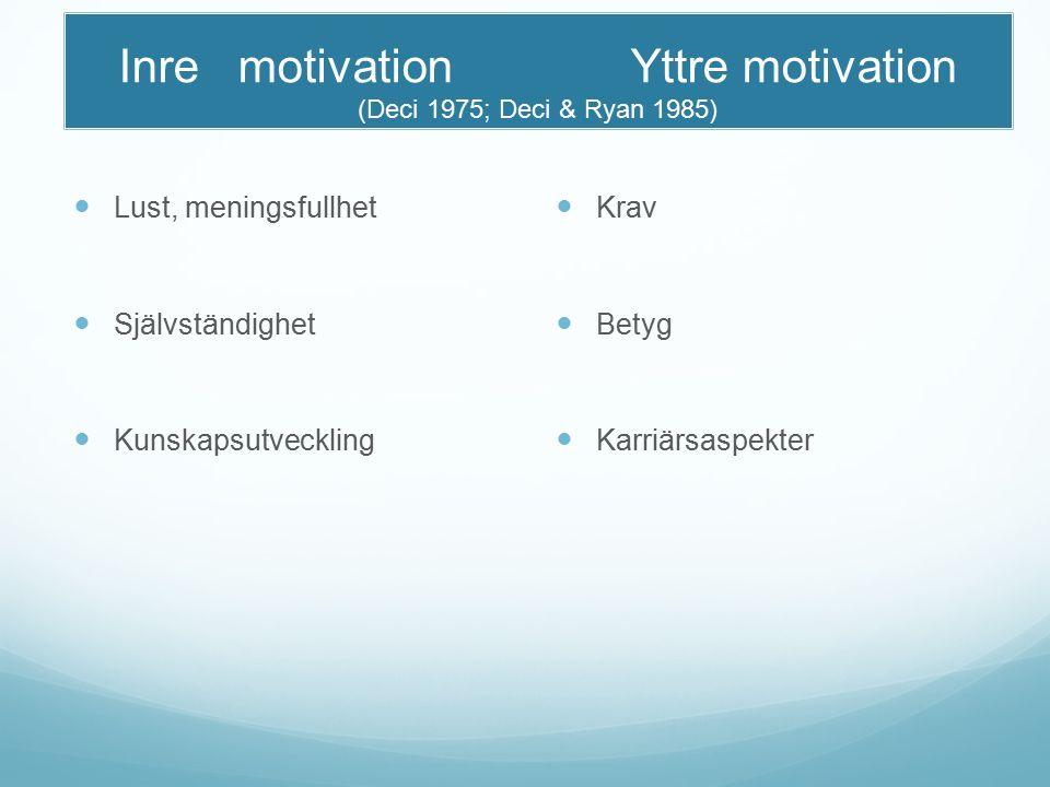 Inre motivation Yttre motivation (Deci 1975; Deci & Ryan 1985) Lust, meningsfullhet Självständighet Kunskapsutveckling Krav Betyg Karriärsaspekter