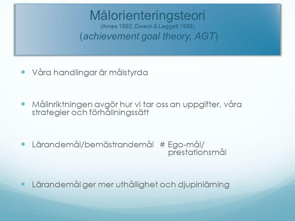 Målorienteringsteori (Ames 1992; Dweck & Leggett 1988) (achievement goal theory, AGT) Våra handlingar är målstyrda Målinriktningen avgör hur vi tar oss an uppgifter, våra strategier och förhållningssätt Lärandemål/bemästrandemål # Ego-mål/ prestationsmål Lärandemål ger mer uthållighet och djupinlärning