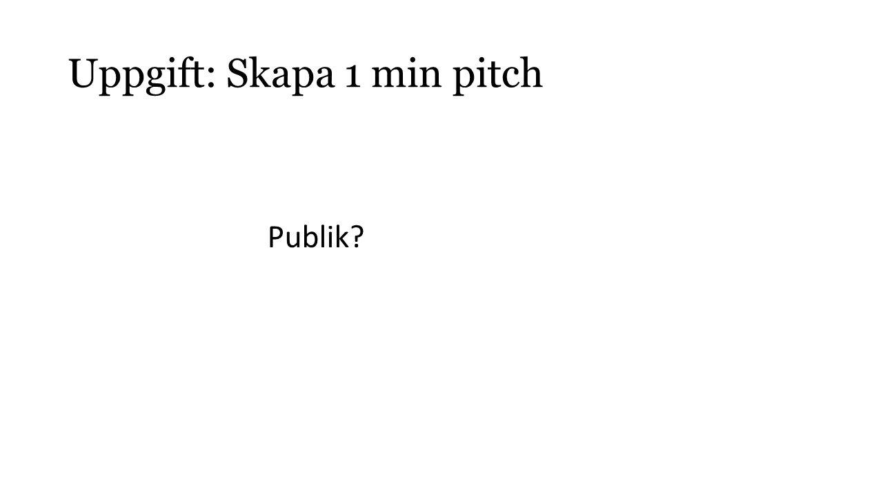 Uppgift: Skapa 1 min pitch Publik?