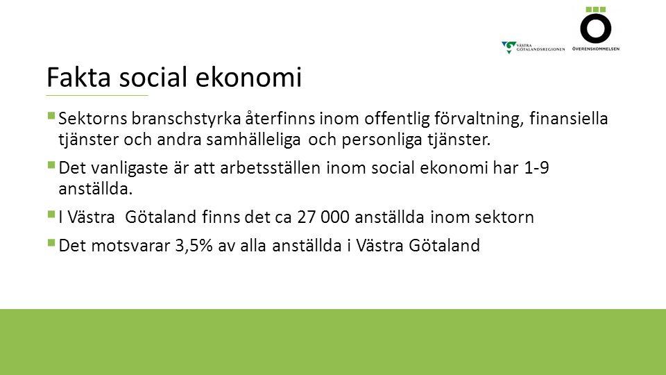 Fakta social ekonomi  Sektorns branschstyrka återfinns inom offentlig förvaltning, finansiella tjänster och andra samhälleliga och personliga tjänste