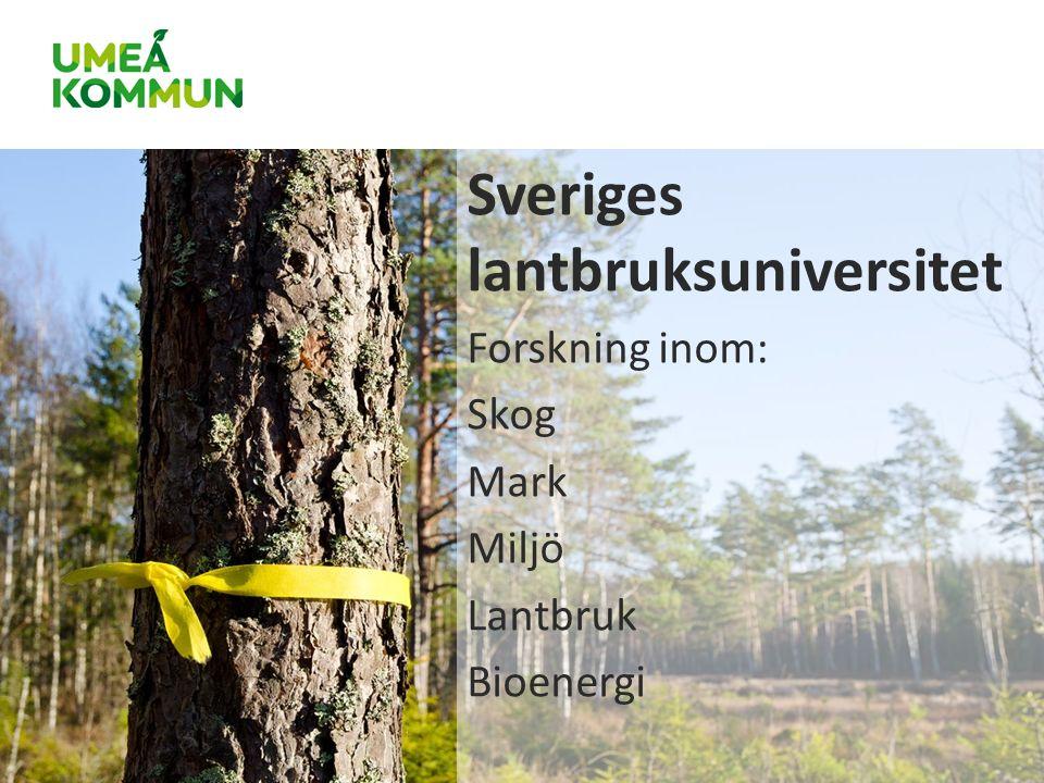 Sveriges lantbruksuniversitet Forskning inom: Skog Mark Miljö Lantbruk Bioenergi