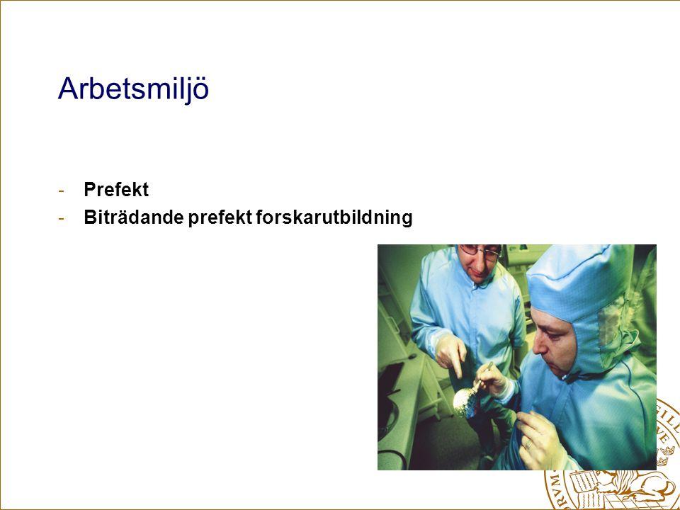 Arbetsmiljö -Prefekt -Biträdande prefekt forskarutbildning