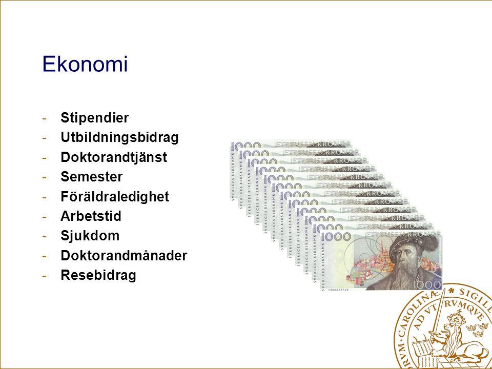 Ekonomi -Stipendier -Utbildningsbidrag -Doktorandtjänst -Semester -Föräldraledighet -Arbetstid -Sjukdom -Doktorandmånader -Resebidrag