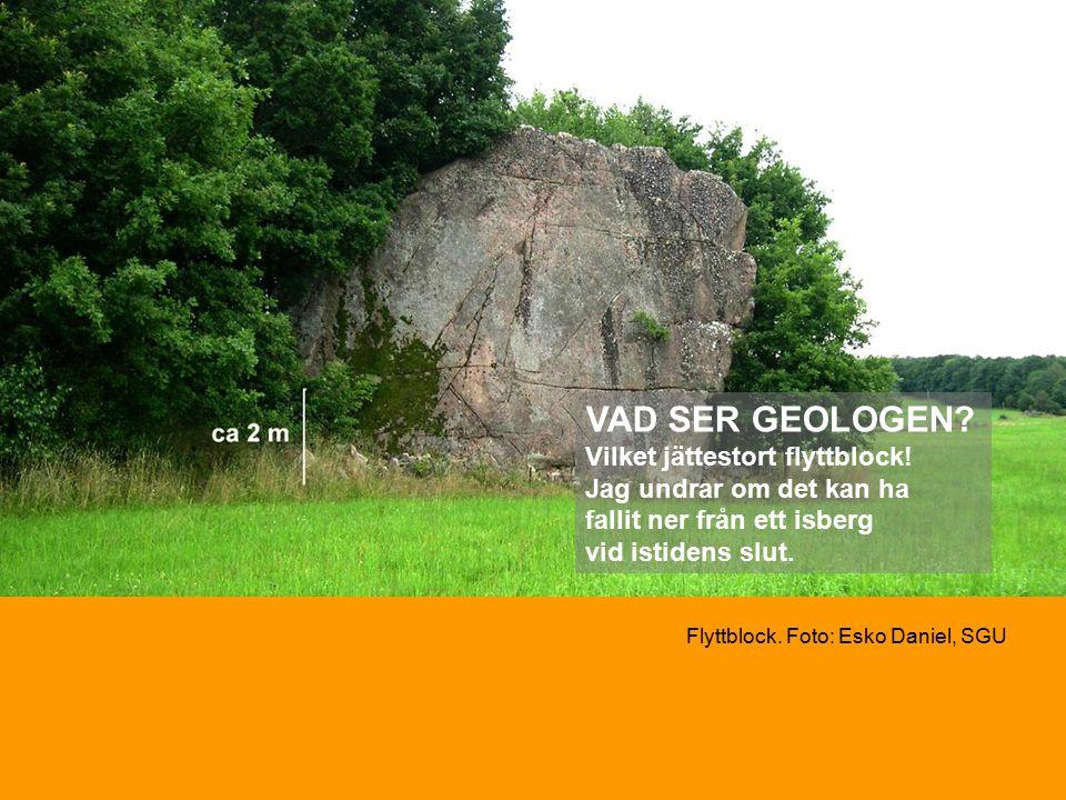 Flyttblock. Foto: Esko Daniel, SGU VAD SER GEOLOGEN.