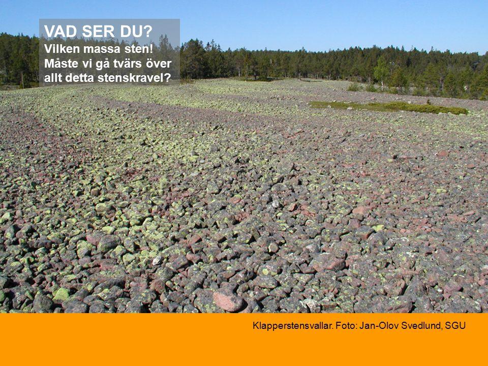 VAD SER DU. Vilken massa sten. Måste vi gå tvärs över allt detta stenskravel.