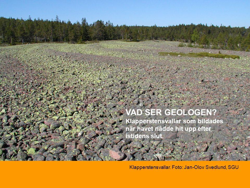 Klapperstensvallar. Foto: Jan-Olov Svedlund, SGU VAD SER GEOLOGEN.