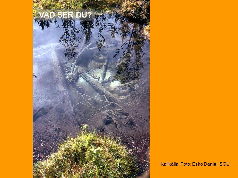 VAD SER DU Kallkälla. Foto: Esko Daniel, SGU