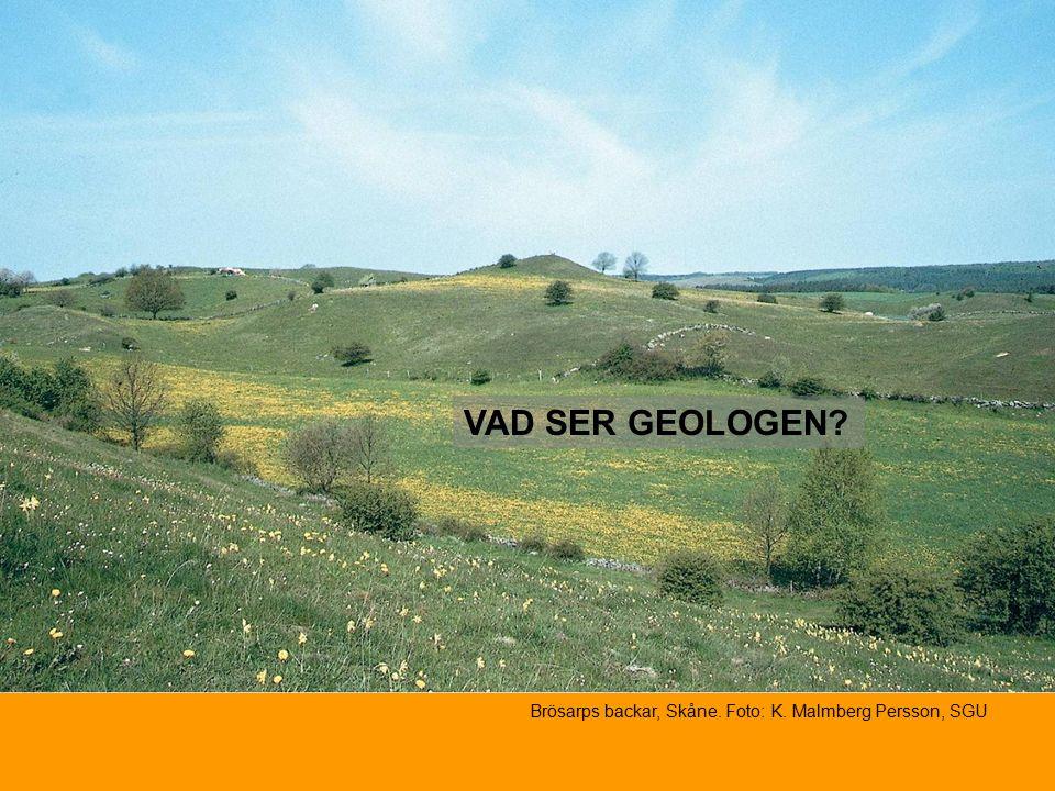 VAD SER GEOLOGEN Brösarps backar, Skåne. Foto: K. Malmberg Persson, SGU