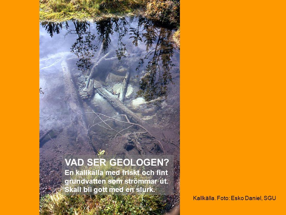 Kallkälla. Foto: Esko Daniel, SGU VAD SER GEOLOGEN.
