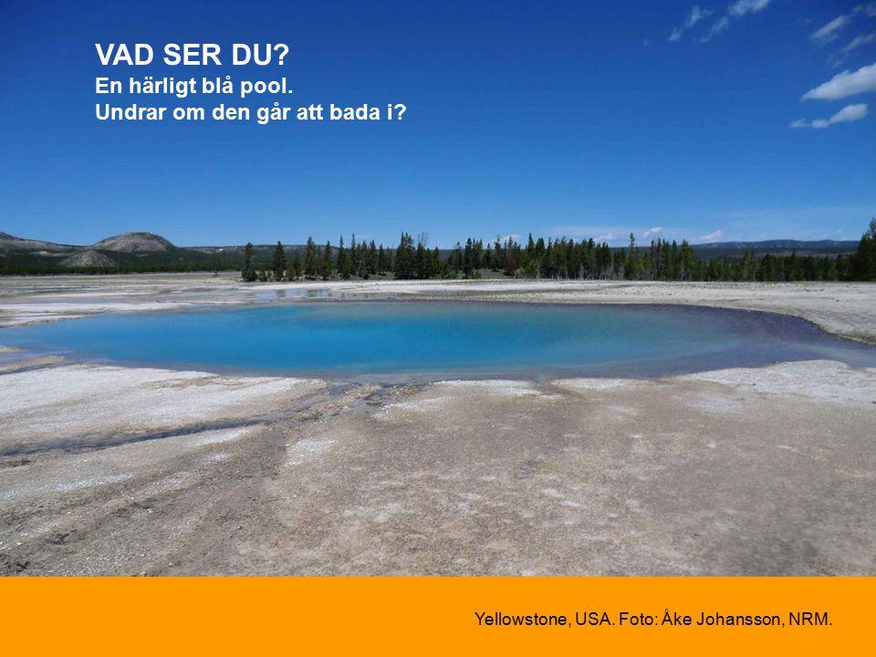 VAD SER DU. En härligt blå pool. Undrar om den går att bada i.