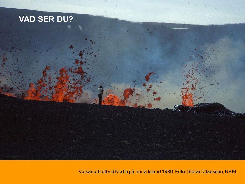 Vulkanutbrott vid Krafla på norra Island 1980. Foto: Stefan Claesson, NRM. VAD SER DU