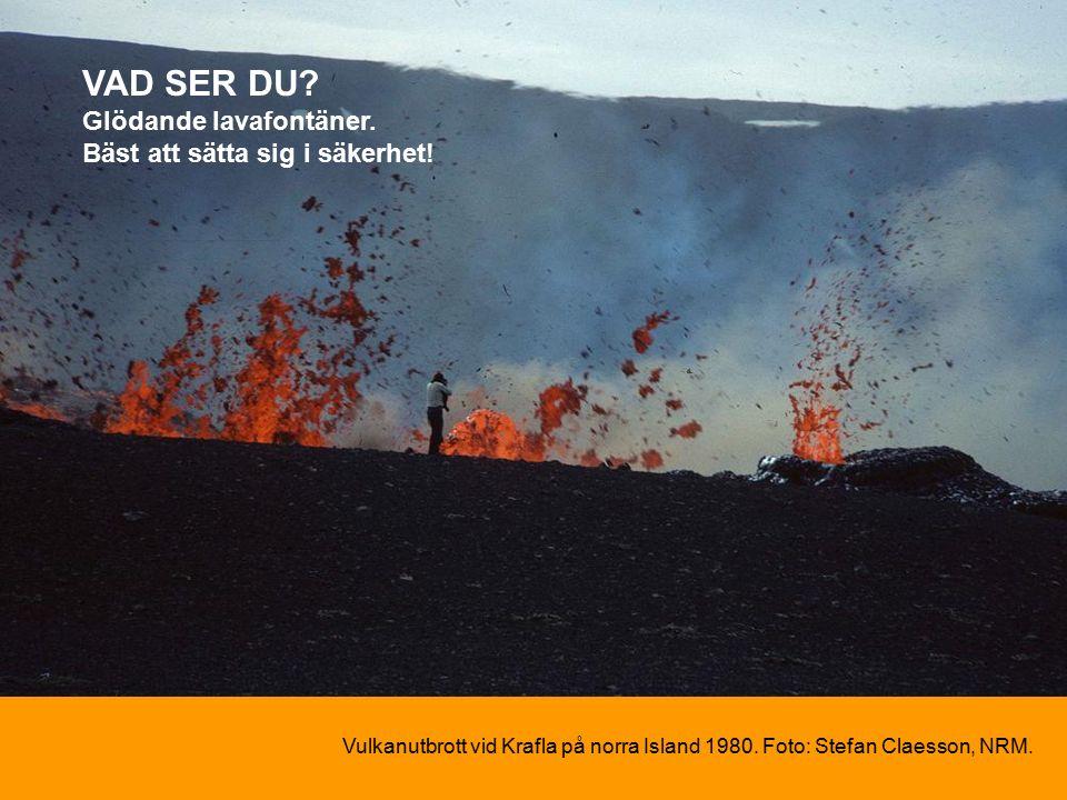 Vulkanutbrott vid Krafla på norra Island 1980. Foto: Stefan Claesson, NRM.
