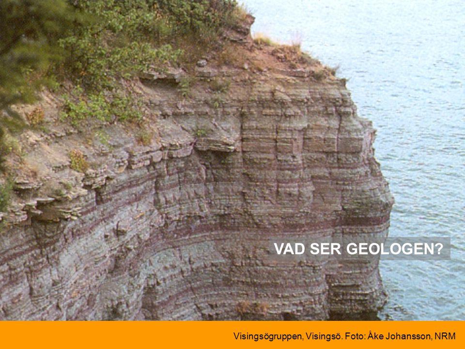 VAD SER GEOLOGEN Visingsögruppen, Visingsö. Foto: Åke Johansson, NRM