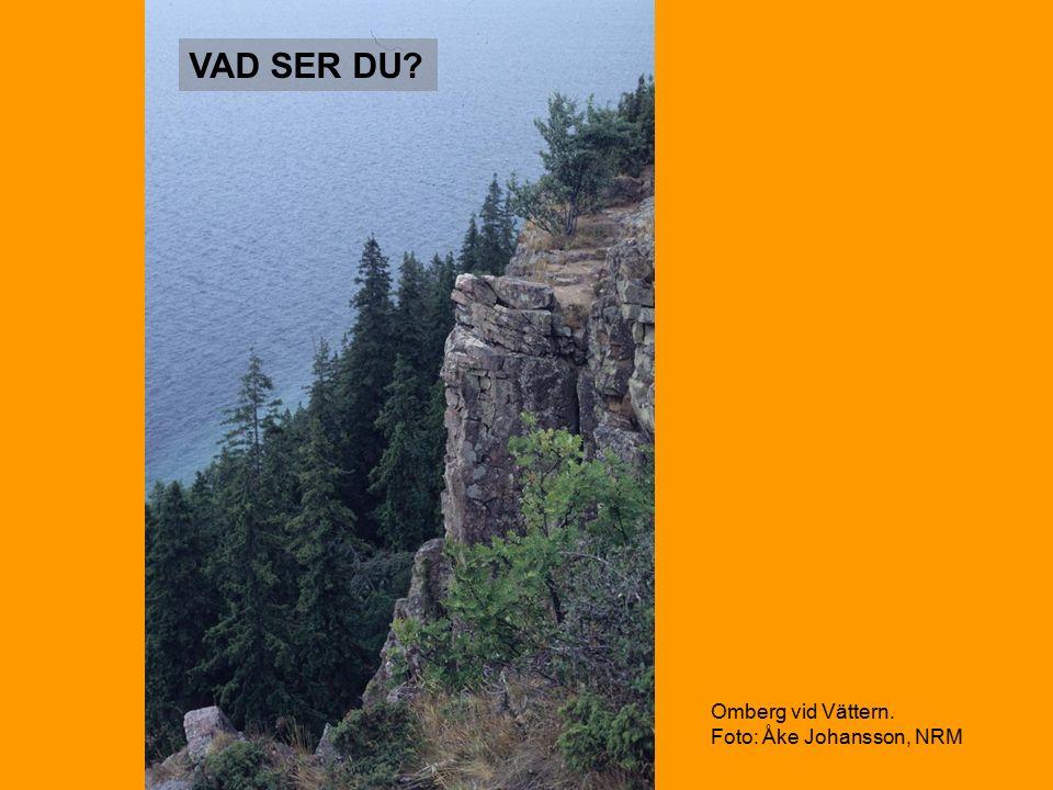 VAD SER DU Omberg vid Vättern. Foto: Åke Johansson, NRM