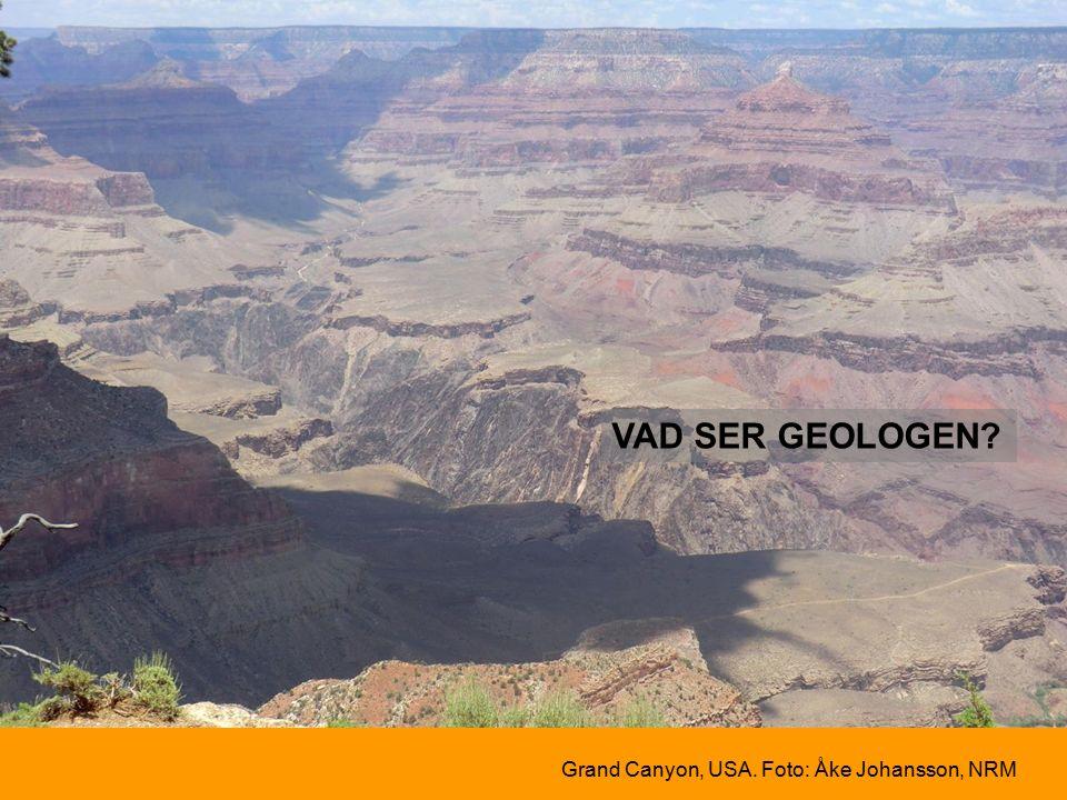 VAD SER GEOLOGEN Grand Canyon, USA. Foto: Åke Johansson, NRM